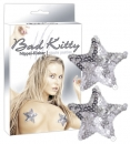 Pasties Silver Star